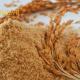 فروش سبوس برنج